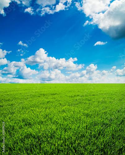 Staande foto Platteland field