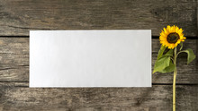 Blank White Card Or Sheet Of  ...