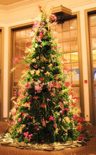 Christmas Tree Made Of Orchids