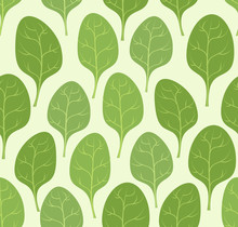 Spinach Leaves Seamless Pattern. Vector Background Veggie Plants