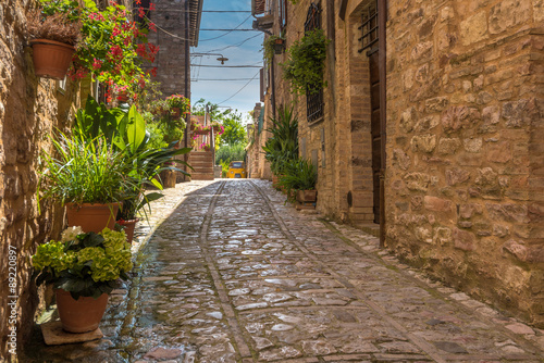 The cobbled streets of the beautifully decorated walls with colo