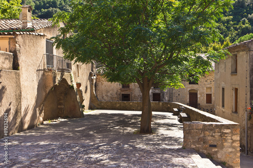 Fotografie, Obraz  Platz mit Baum in Saint Guilhem le Désert