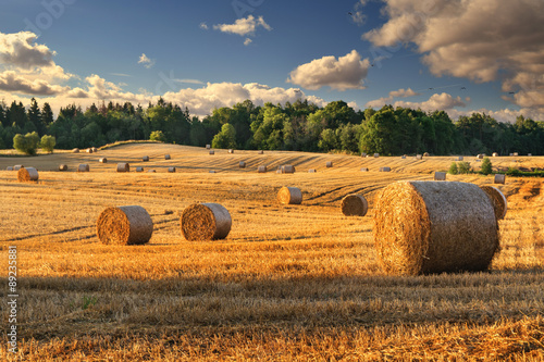 Montage in der Fensternische Landschappen Haystacks on the field. Summer, rural landscape.