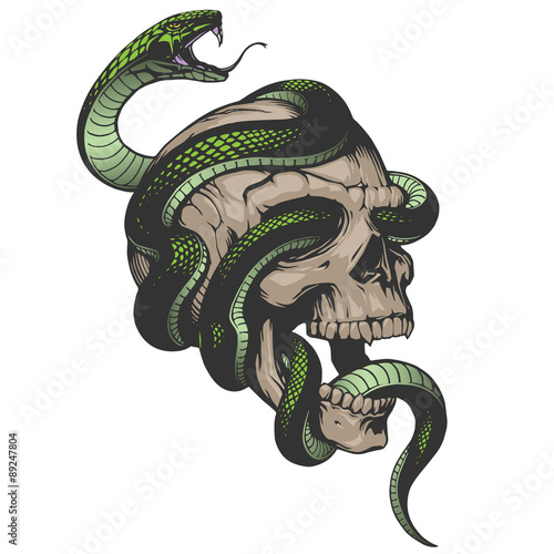 Skull with snake illustration Wallpaper Mural
