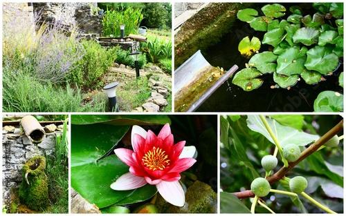 composition d\'aménagement d\'extérieur,fontaine,massif,jardin - Buy ...