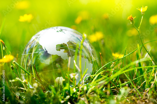 Fototapety, obrazy: Green & Eco environment, glass globe in the garden