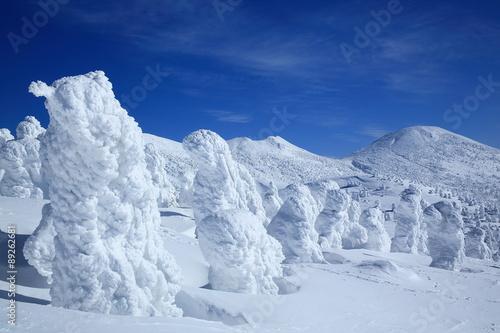 Photo 青森県 八甲田の樹氷