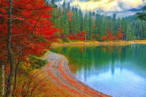 Foto op Canvas Herfst picturesque lake in the autumn forest