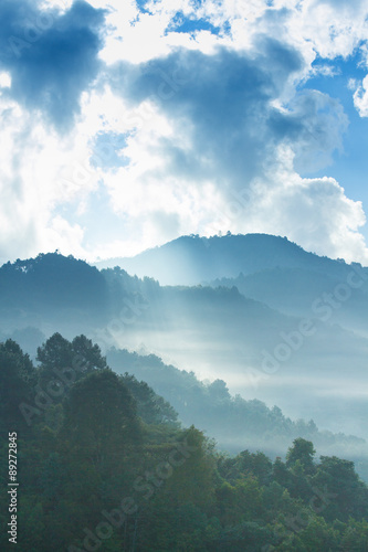Foto op Canvas Blauwe jeans Colourful forest landscape in Doi Ang khang, Chiang Mai Province ,Thailand.