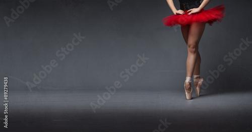 Fotografie, Obraz  red tutu and tiptoe close up