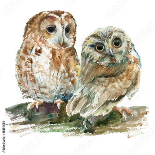 Canvas Prints Owls cartoon Watercolor owls