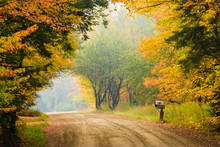 Rural Dirt Road And Mailbox On A Foggy Morning.