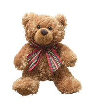 Teddy Bear Isolated On White Bacground