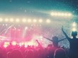 Festival Fans mit Blick auf die Bühne