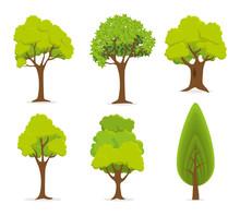 Ecology Digital Design.
