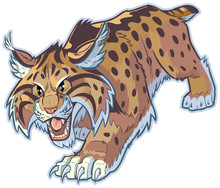 Bobcat Or Wildcat Vector Mascot Illustration