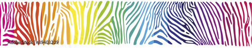 Background with Zebra skin in the rainbow colors - 89403209