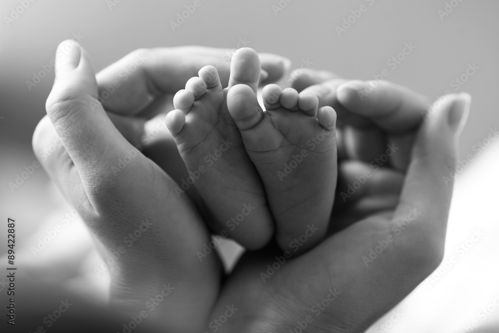 Fotografie, Obraz Baby feet cupped into mothers hands