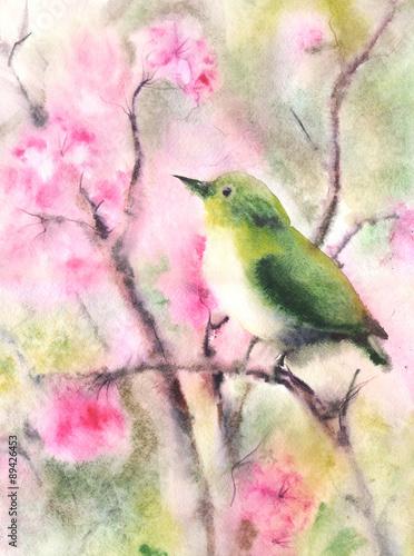 kolor-wody-rysunek-malego-zielonego-ptaka