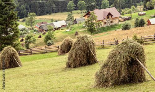 Poster Scandinavië rural landscape