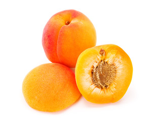Apricots on white (Prunus armeniaca)