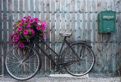Fotobehang Fiets old vintage bicycle with flower basket