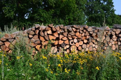 In de dag Brandhout textuur Brennholzstapel in der Natur