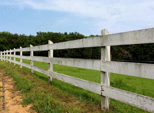 Fotografie, Obraz  farm fence