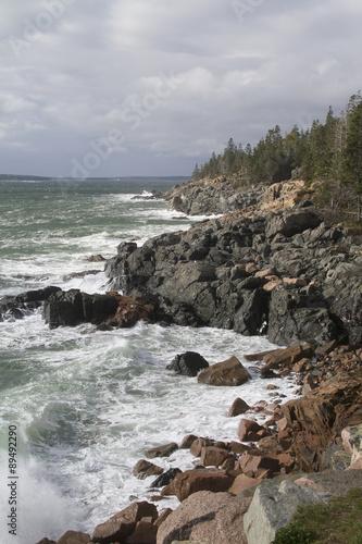 Fotografie, Obraz  Rocky shoreline in Acadia National Park.coastal Maine