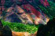 Overlooking Waimea Canyon State Park, Kauai, Hawaii, USA