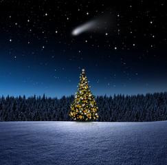 Fototapeta Boże Narodzenie/Nowy Rok Weihnachtsbaum bei Nacht