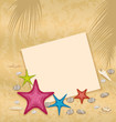 Sand background with paper card, starfishes, pebble stones, seas