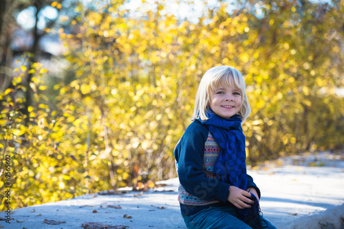 Portrait of adorable happy boy  in the beauty autumn park Poster Mural XXL