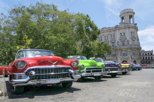 Vintage multi-coloured taxis in Cuba Slika na platnu