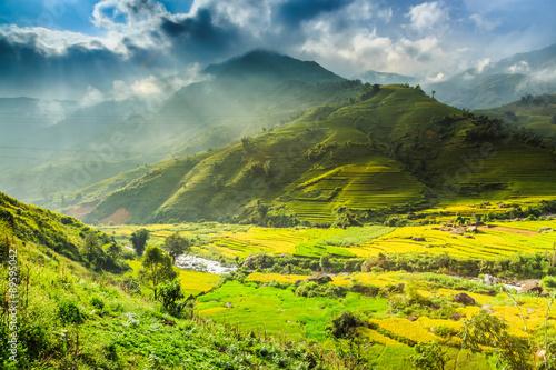 Foto auf Leinwand Lime grun Valley Vietnam