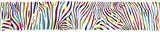 Fototapeta Fototapeta z zebrą - Background with multicolored Zebra skin