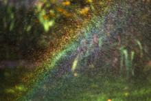 Rainbow In Lawn Sprinkler Drops In Garden