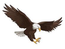Eagle 001