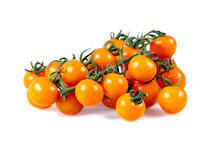 Fresh Yellow Baby Plum Tomatoes, On Branch. Isolated On White Background.