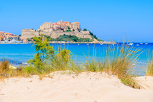 Green Grass On Sand Dune On Beach With Blurred Old Town Of Calvi In Background, Corsica Island, France