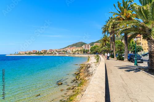 Obraz na plátně Coastal promenade with palm trees in Ajaccio town, Corsica island, France