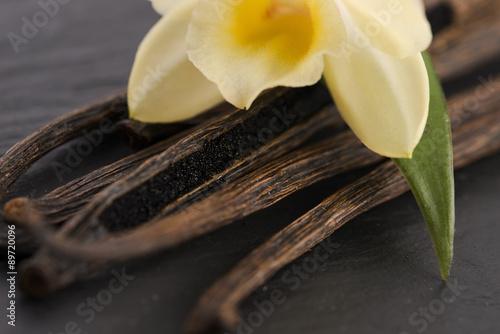 Fotografía  Vanilla pods