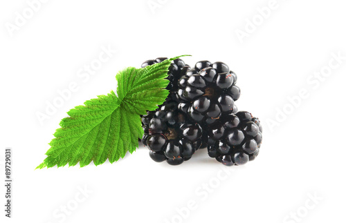 Fotografija  Blackberries with leaf on a white