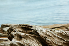 Twisted Driftwood With Lake Su...