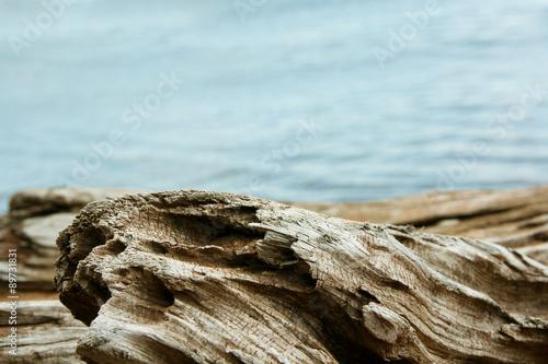 Fotografie, Obraz  Twisted Driftwood with Lake Superior Background
