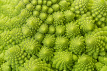 Textured Green Fresh Romanesque Cauliflower