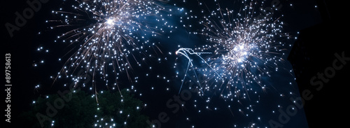 Feux d'artifice Canvas Print