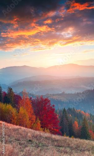 Foto op Aluminium Diepbruine Colorful autumn sunrise in the Carpathian mountains