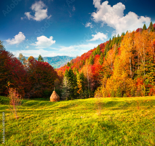 Foto op Aluminium Oranje Colorful autumn landscape in the Carpathian mountains