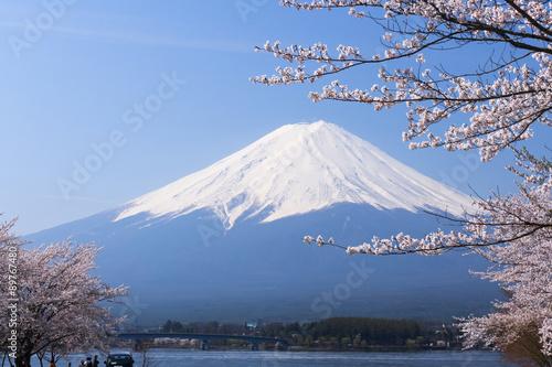 Fotografie, Obraz  富士山 と 満 開 の 桜 ソ メ イ ヨ シ ノ 河口湖